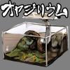 怪しいオヤジたちを繁殖させるアプリ 「オヤジリウム」が密かなブーム!!!