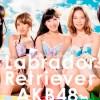 AKB48握手会  ネット上のネタ 「アクリル板越しの握手」を現実化する案が浮上